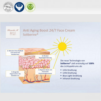 Anti Aging Boost 24/7 Face Cream, Soliberine, Wirkung