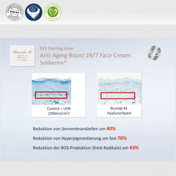 Gesichtscreme 925 Sterling Silver Anti Aging Boost 24/7 Face Cream Soliberine Vorteile